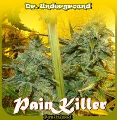 Dr_Underground_-_PainKiller.jpg