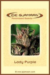 De_Sjamaan_-_Lady_Purple.jpg