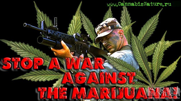 current war against marijuana Opponents of legalization worry that fully allowing recreational marijuana use would the case against marijuana legalization continuation of the current war.