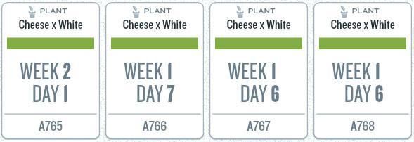 week01_plants2.jpg