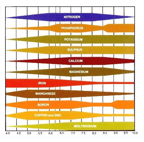ph_nutrient_chart.jpg