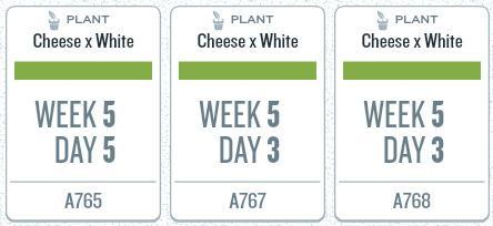 week05_plants.jpg