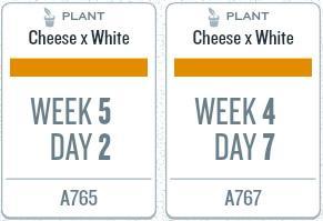 week09_plants.jpg