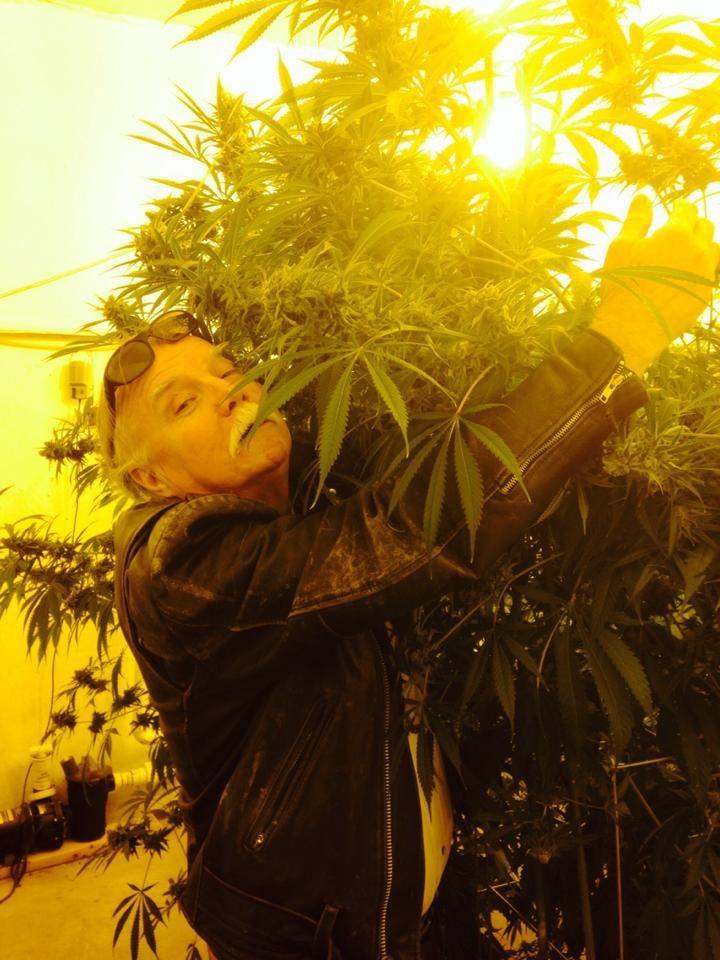 john weed.jpg