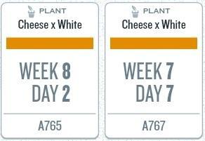 week12_plants.jpg