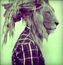 Bob Marley Naturals - last post by Dust