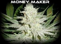 MONEY MAKER .