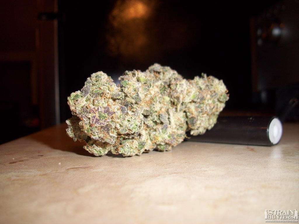 Purple Wreck