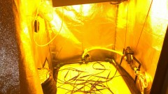 Pre-Burning HPS 400w bulb Philips Master son-T greenpower.