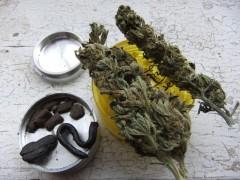this week ill be mostly smoking.............. Hashish