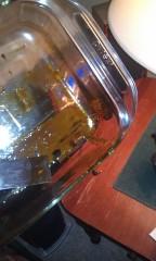 Hash Oil closeup