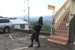 Strain Hunters Jamaica