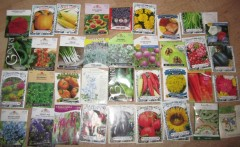 my other seeds