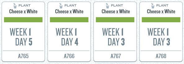 week01_plants.jpg