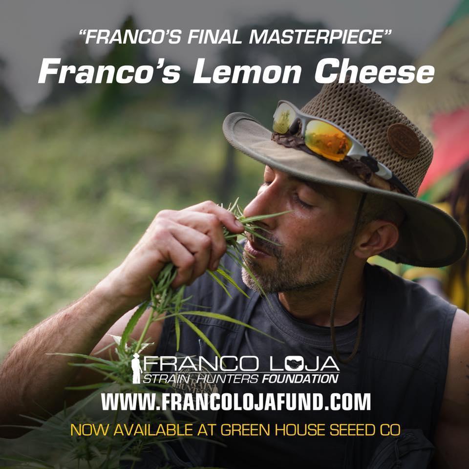 Francos-lemon--1.jpg.970c294b151158216d72246276e32300.jpg