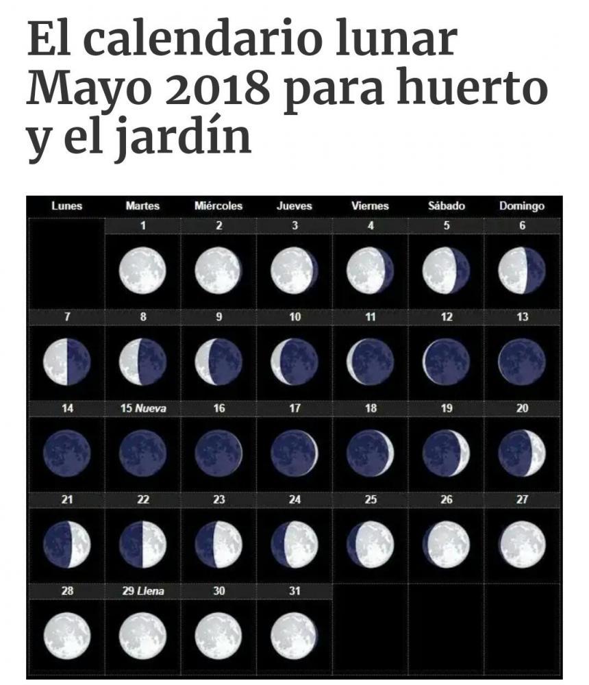 _20180502_160636.JPG