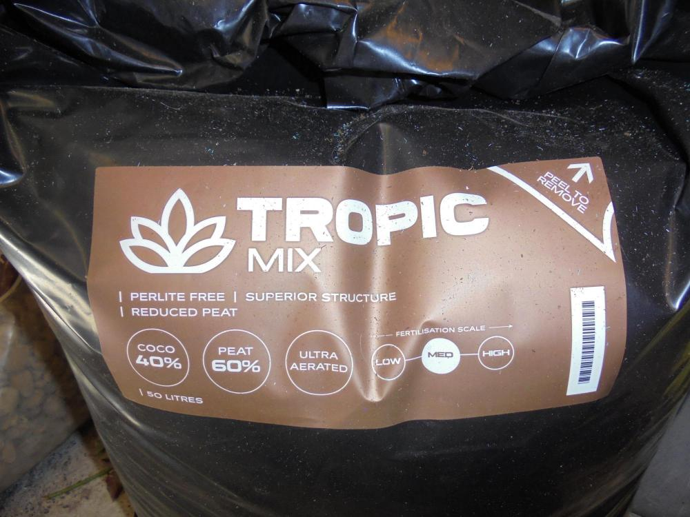 21april-2020-tropic-mix-bag.thumb.jpg.bdc76288930b688573e11ce384875434.jpg