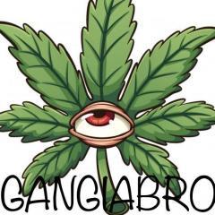 Gangiabro