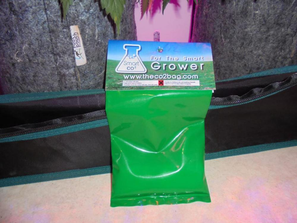 07feb-2021-smart-co2-bag.thumb.jpg.69590cee1ce172383d0c75ca69e013aa.jpg